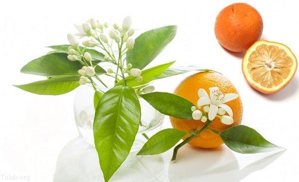 آیا بهار نارنج فشار خون را بالا میبرد